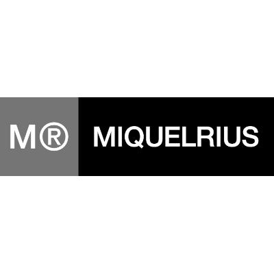 Miquel Rius